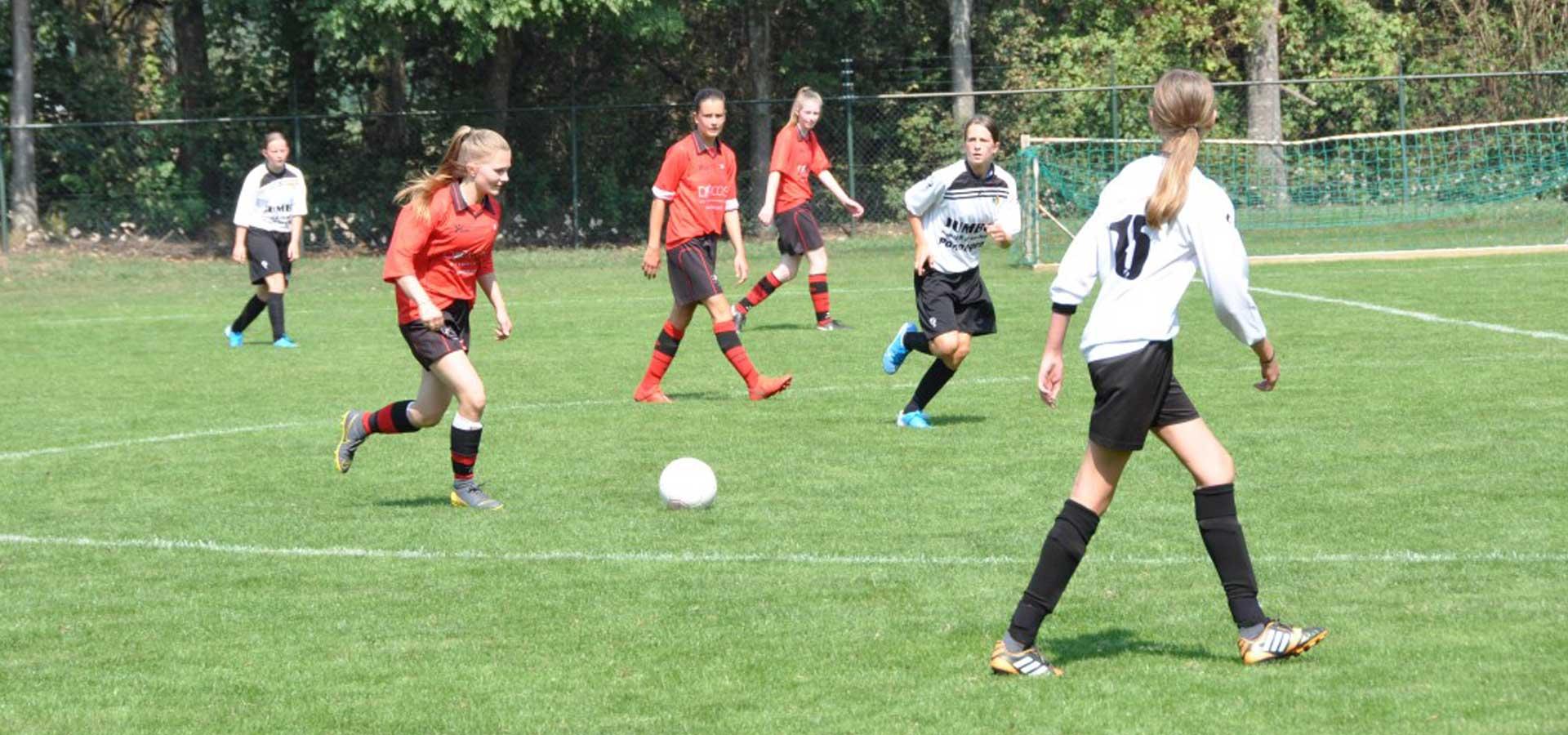 De meiden van VV Baarlo MO17-1 | website René Janssen